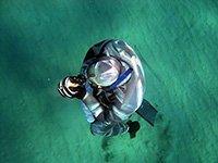 Anthea Hotel Tinos | Diving